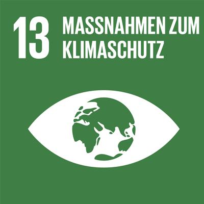 SDG_Goal_13