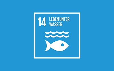 14 – Leben unter Wasser