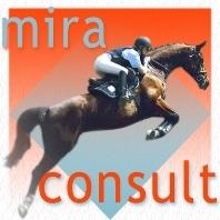 miraconsult_logo_neu121206-Header-WordPress
